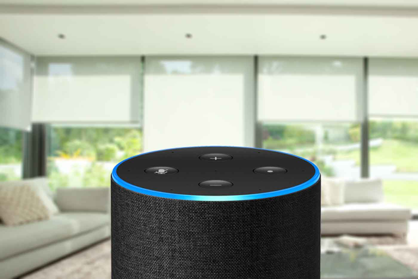 Alexa voice operated blinds